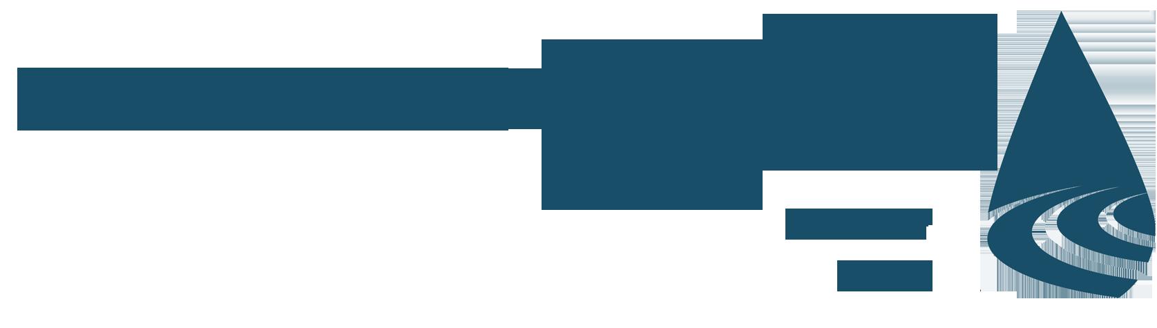 The Alliance of Leadership Fellows